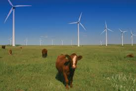 Five things Argentina can do to boost renewables